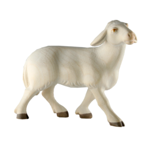 1211-Sheep-Standing.png