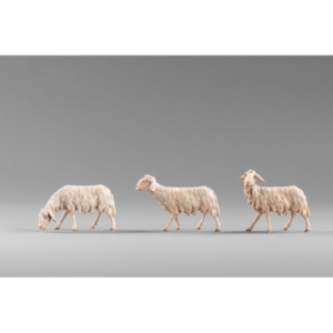 236122_236124_236120-Three-Sheep.png