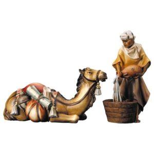 Lying Camel Group