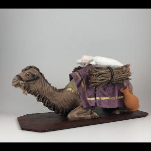 Camel Lying
